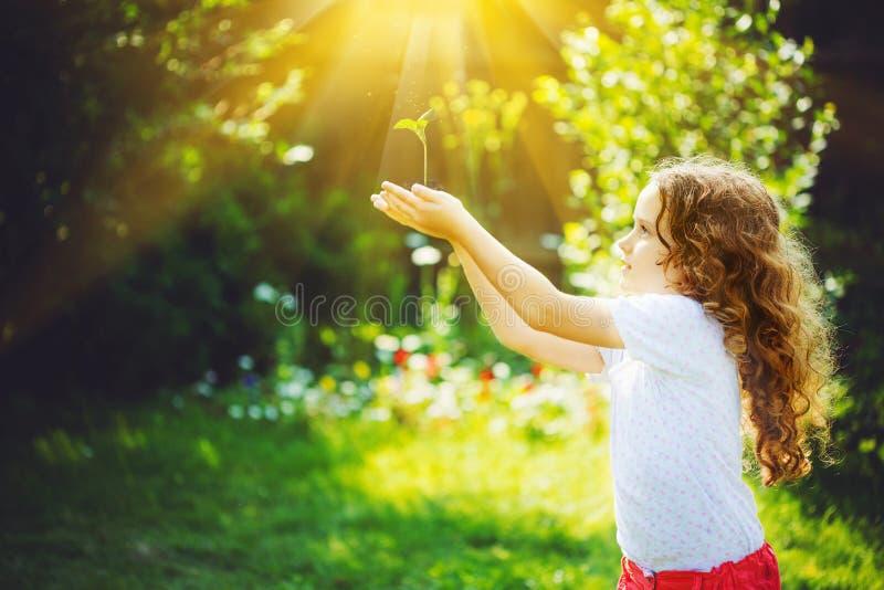 逗人喜爱的女孩在阳光下的拿着年轻绿色植物 库存图片