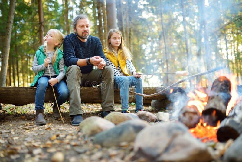 逗人喜爱的妹和他们的父亲烤蛋白软糖在棍子在篝火 孩子获得乐趣在阵营火 野营与 免版税库存照片
