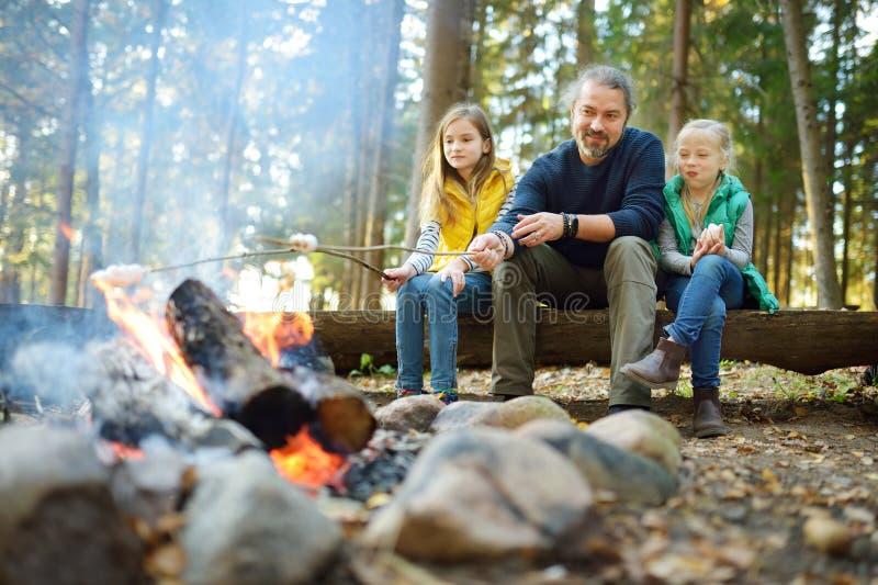 逗人喜爱的妹和他们的父亲烤蛋白软糖在棍子在篝火 孩子获得乐趣在阵营火 野营与 图库摄影