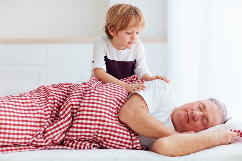 逗人喜爱的孙子轻轻地把暗藏的祖父吵醒 免版税库存照片