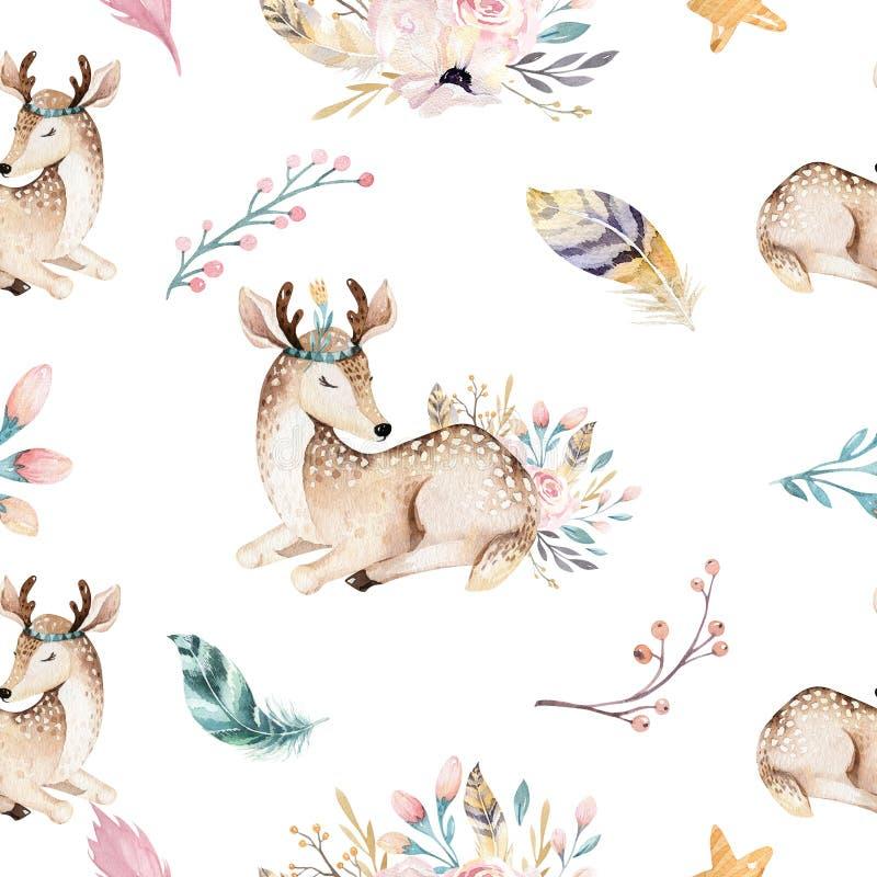 逗人喜爱的家庭婴孩raccon、鹿和兔宝宝 动物托儿所长颈鹿和熊隔绝了例证 水彩boho raccon 库存例证
