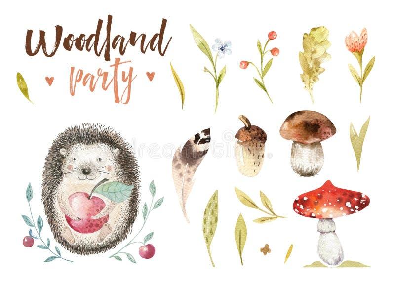 逗人喜爱的小动物托儿所隔绝了孩子的例证 水彩boho森林图画,水彩,猬图象 库存例证