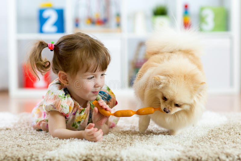 逗人喜爱的小女孩和滑稽的狗在家 免版税图库摄影