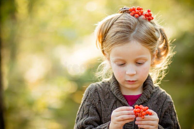 逗人喜爱的小孩女孩佩带的毛线衣、被编织的帽子和围巾,拿着花楸浆果 秋天、红色和黄色叶子 小女孩 免版税库存图片