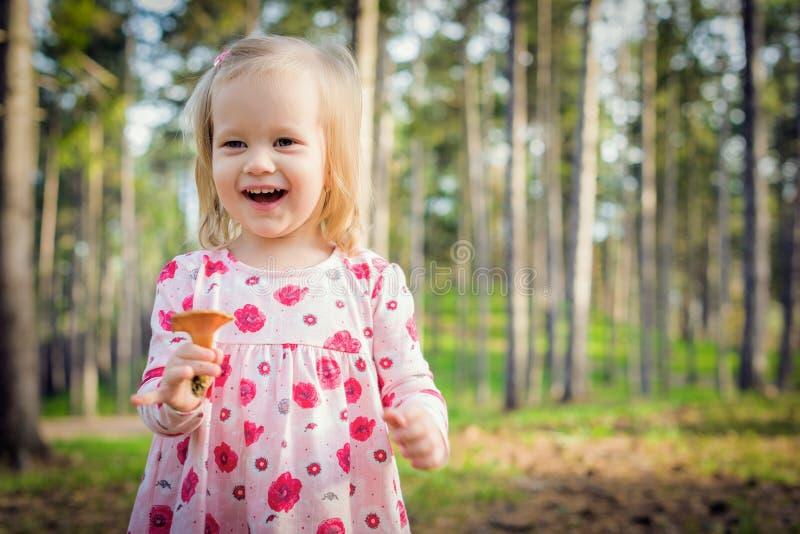 逗人喜爱的小孩女孩采摘在举行蘑菇和笑的森林愉快的孩子采蘑菇 图库摄影