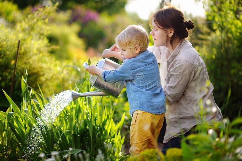 逗人喜爱的小孩男孩和他的年轻母亲水厂在庭院里 免版税库存图片