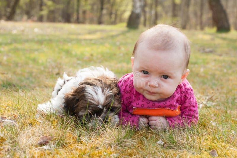 逗人喜爱的小狗和婴孩在公园 免版税库存图片