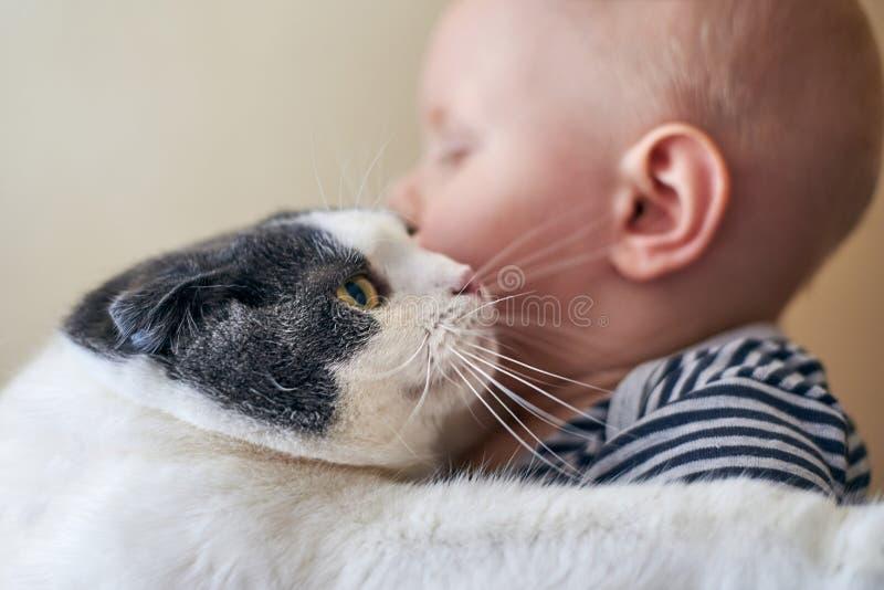 逗人喜爱的小男孩拥抱一只大猫 免版税库存照片