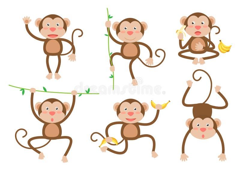 逗人喜爱的小的猴子动画片传染媒介集合用不同的姿势 库存例证