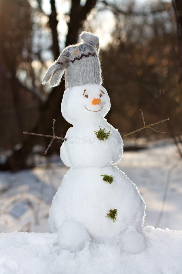 逗人喜爱的小的雪人 库存照片