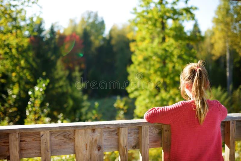 逗人喜爱的少女获得乐趣在森林远足期间在美好的夏日 儿童探索的自然 库存图片