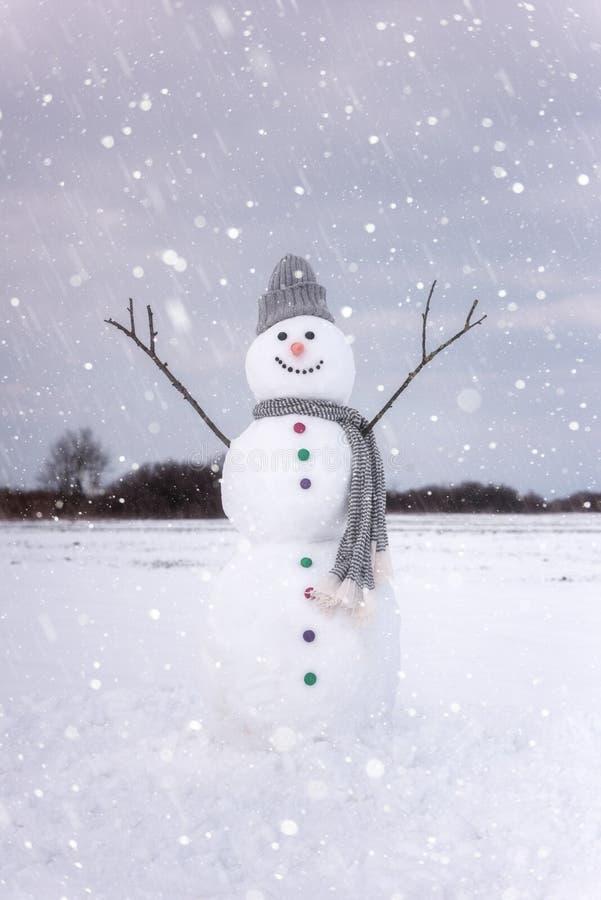 逗人喜爱的微笑的雪人在冬日,节日快乐概念 免版税库存照片