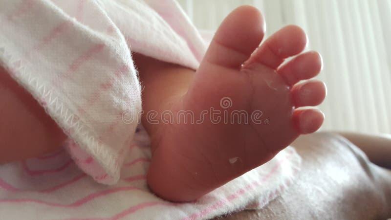 逗人喜爱的新出生的婴孩脚 免版税库存照片