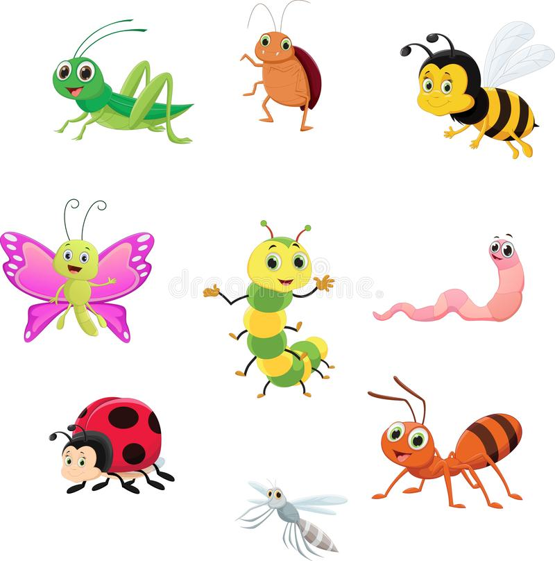 逗人喜爱的昆虫汇集集合 皇族释放例证
