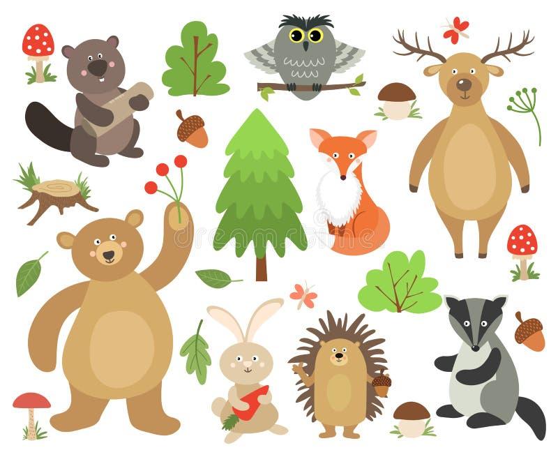 逗人喜爱的森林地动物 海狸狐狸鹿猫头鹰熊野兔猬獾 动画片森林动物收藏 向量例证