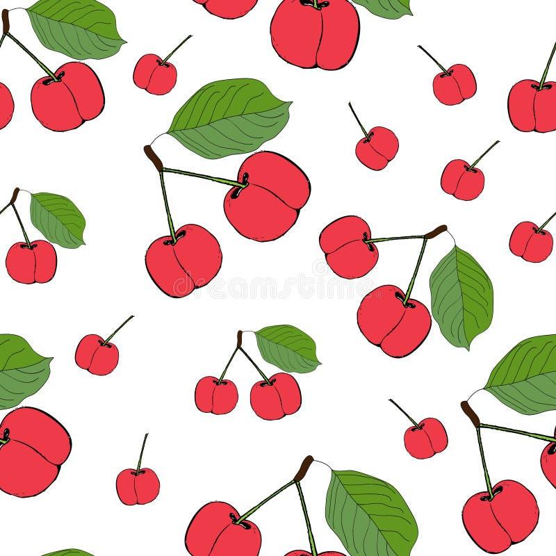 逗人喜爱的樱桃无缝的样式 有益于纺织品,包裹,墙纸等等 在白色背景隔绝的甜红色成熟樱桃 v 库存例证