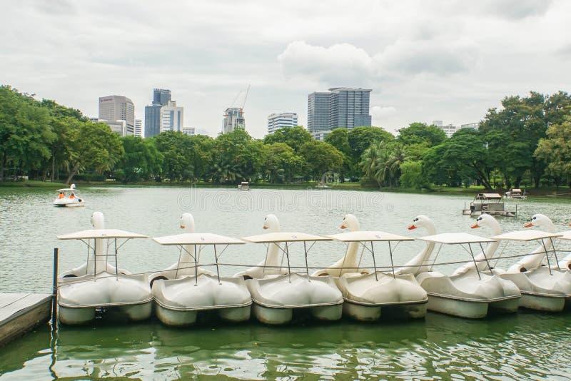 逗人喜爱的水周期在Lumpini公园的湖在2018年7月11日的曼谷和锻炼的采取的家庭放松 免版税库存图片