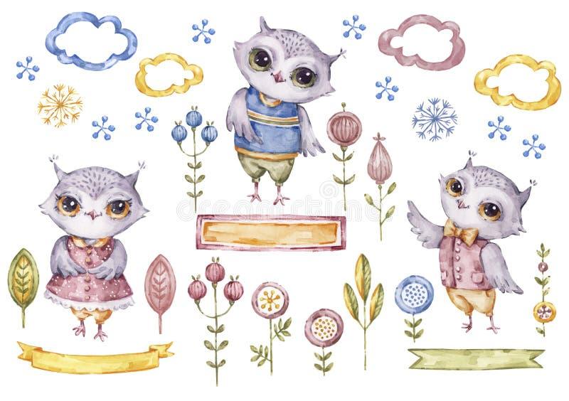 逗人喜爱的水彩猫头鹰收藏,花卉元素 向量例证