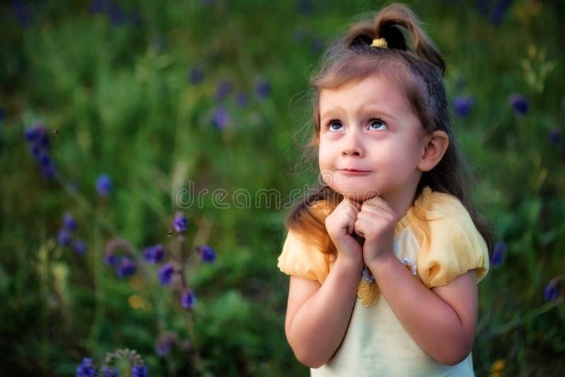 逗人喜爱的滑稽的女婴查找作梦户外在绿色领域 儿童画象 库存照片