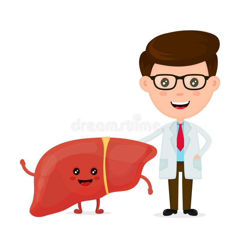 逗人喜爱的滑稽的微笑的医生和健康愉快的肝脏 库存例证