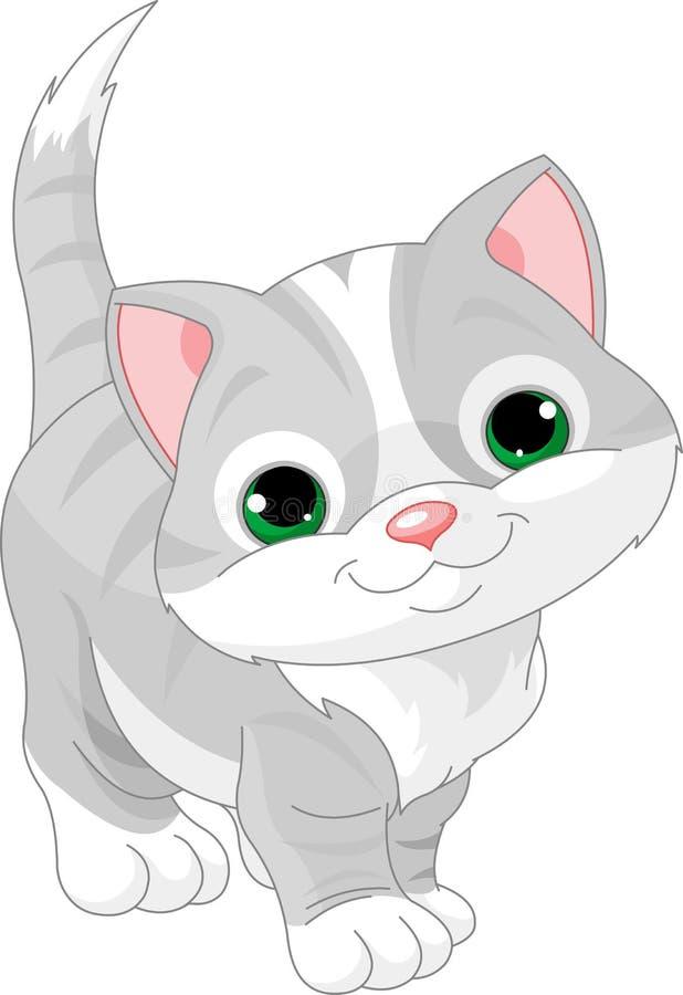 逗人喜爱的灰色小猫 皇族释放例证