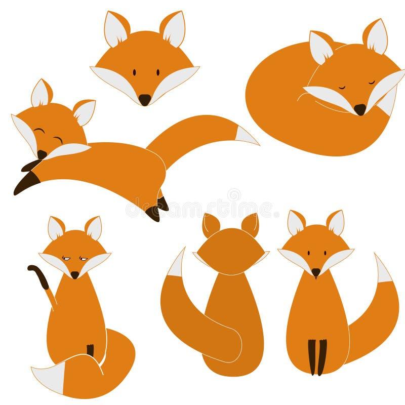 逗人喜爱的狐狸集合 向量例证