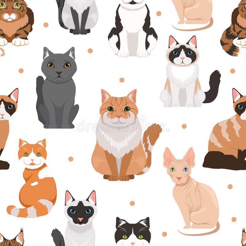 逗人喜爱的猫的传染媒介无缝的样式 宠物的色的图片 皇族释放例证