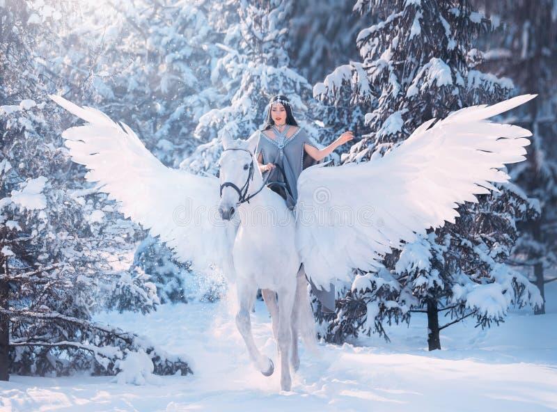 逗人喜爱的甜哀伤的夫人在马背上与华美的柔光翼,白色佩格瑟斯在一个多雪的冬天森林运载黑暗 免版税图库摄影
