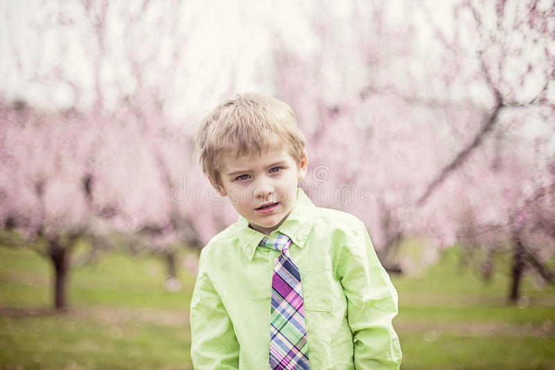 逗人喜爱的男孩在春天 免版税库存图片