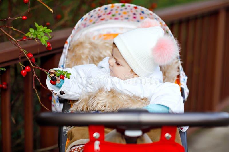 逗人喜爱的矮小的美丽的女婴在摇篮车或婴儿推车坐秋天天 散步愉快的健康的孩子  免版税库存照片