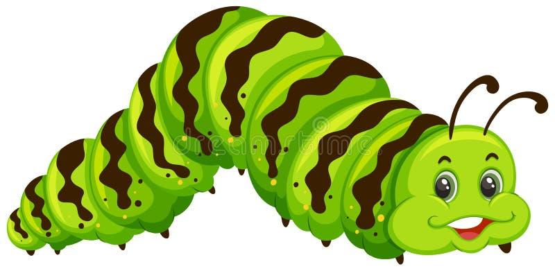 逗人喜爱的绿色毛虫动画片 库存例证