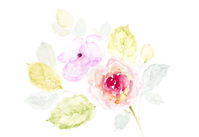 逗人喜爱的罗斯花水彩手画在白色背景 向量例证