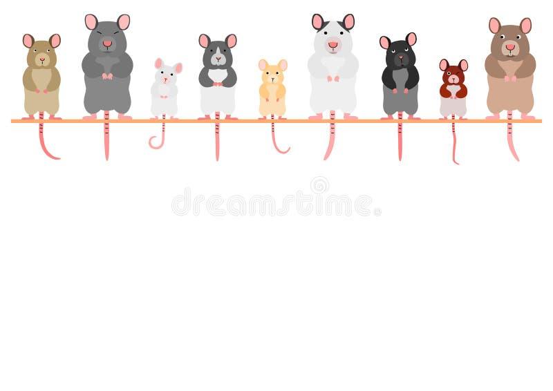 逗人喜爱的老鼠和鼠连续 库存例证