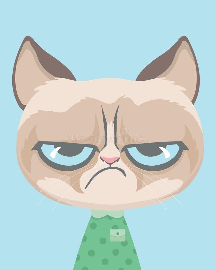 逗人喜爱的脾气坏的猫 皇族释放例证