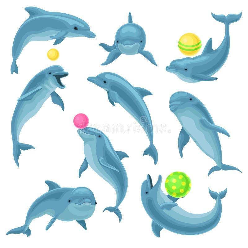 逗人喜爱的蓝色海豚设置,跳的海豚,并且performings欺骗与娱乐节目传染媒介例证的球在a 皇族释放例证