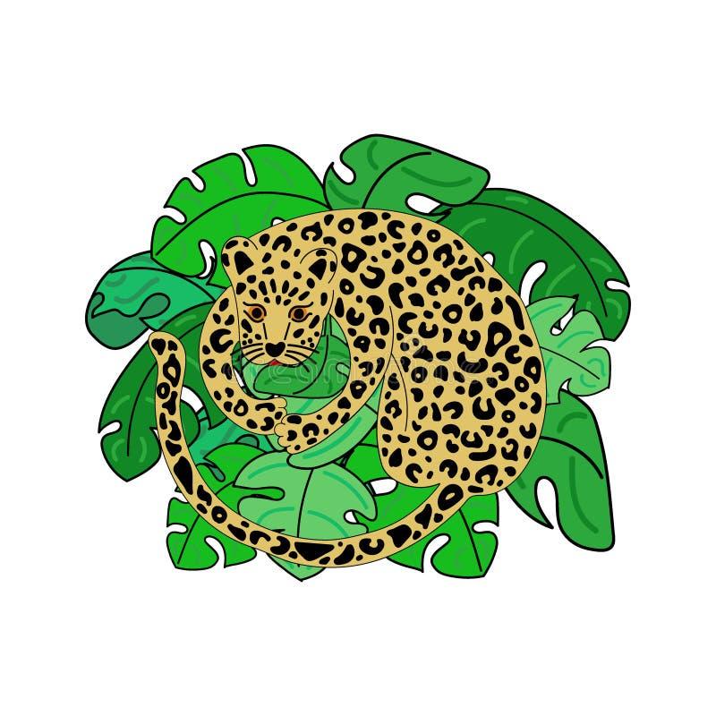 豹子的传染媒介例证 向量例证