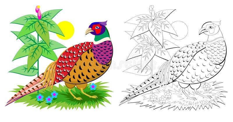 逗人喜爱的野鸡的幻想例证与明亮的羽毛覆盖的 彩图的五颜六色和黑白页孩子的 皇族释放例证