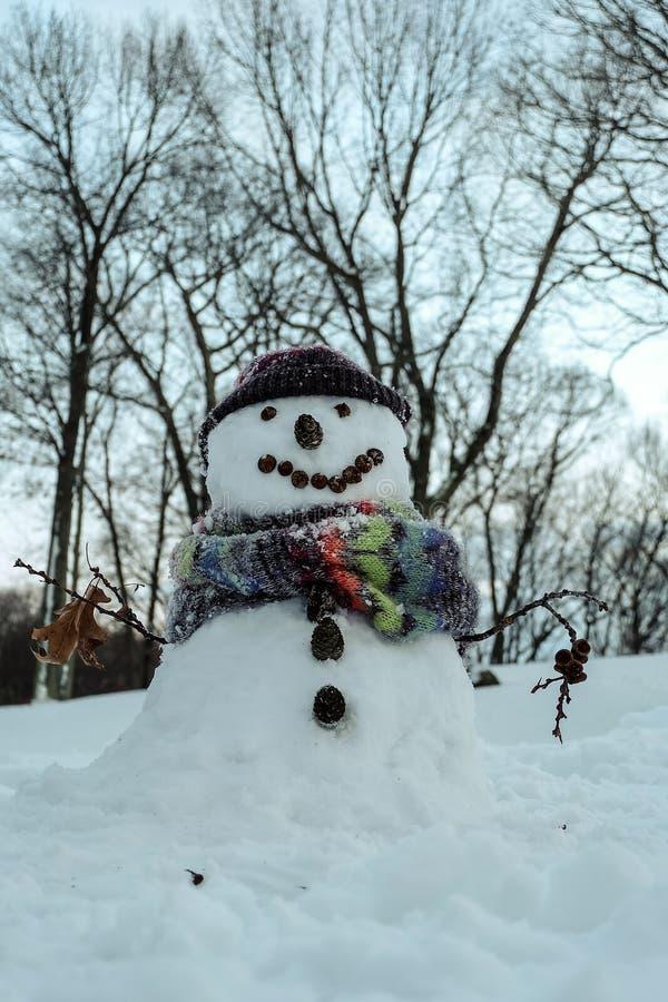 逗人喜爱的雪人 库存图片