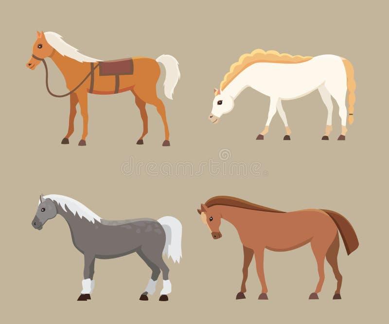 逗人喜爱的马在各种各样的姿势传染媒介设计 动画片农厂野生被隔绝的马和平的小马另外剪影  库存例证