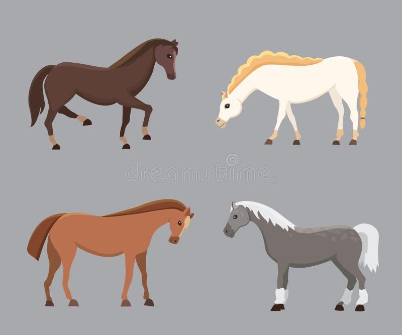 逗人喜爱的马在各种各样的姿势传染媒介设计 动画片农厂野马和平的小马另外剪影  向量例证