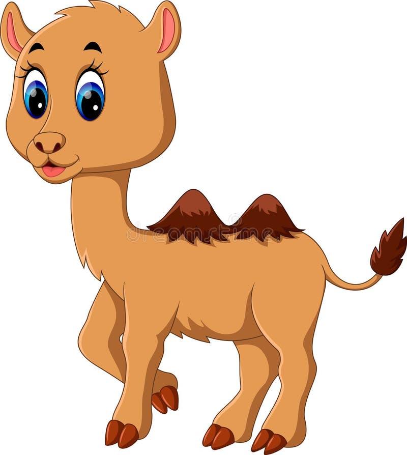 逗人喜爱的骆驼动画片 皇族释放例证