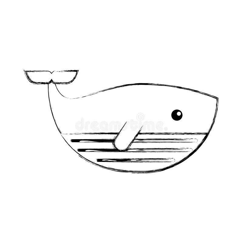 逗人喜爱的鲸鱼被隔绝的象 向量例证