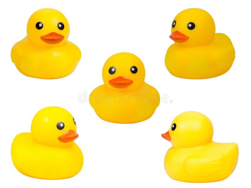 逗人喜爱的黄色橡胶鸭子被隔绝在白色背景,裁减路线 库存照片