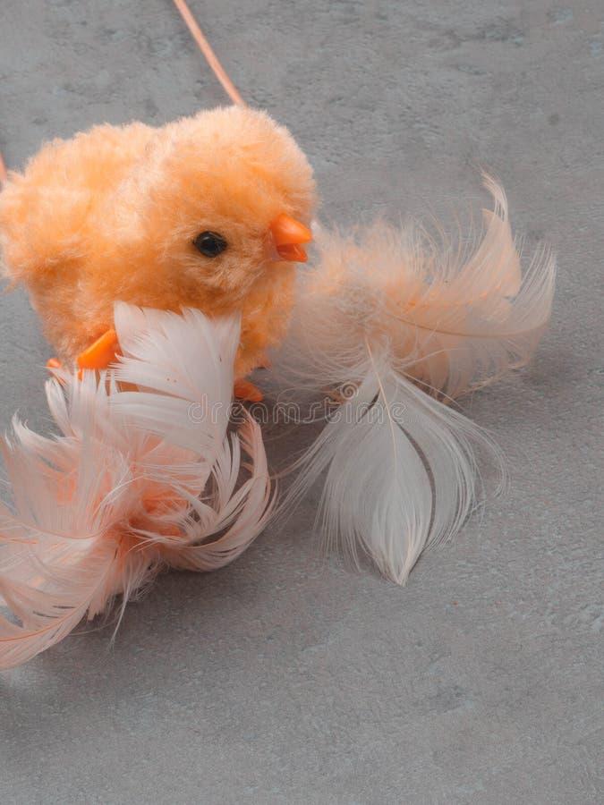 逗人喜爱的黄色felted鸡玩具和羽毛背景 2个所有时段小鸡概念复活节彩蛋开花草被绘的被安置的年轻人 图库摄影