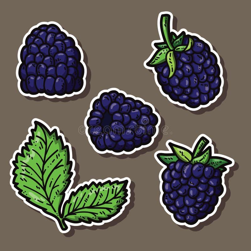 逗人喜爱的黑莓 库存例证
