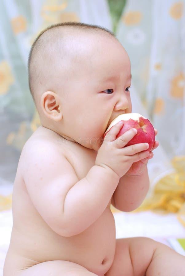 逗人喜爱苹果的婴孩吃 库存照片