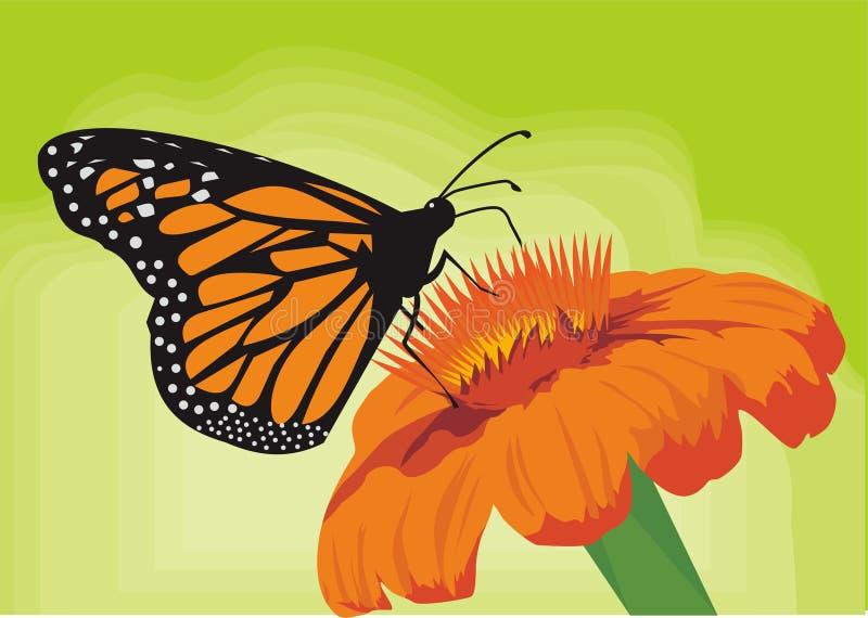 逗人喜爱蝶粉花橙色绿色的秀丽 免版税图库摄影