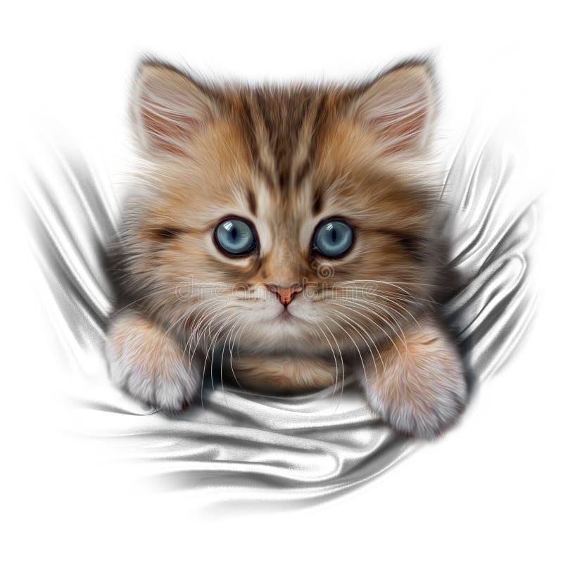 逗人喜爱kittten与蓝眼睛 库存例证