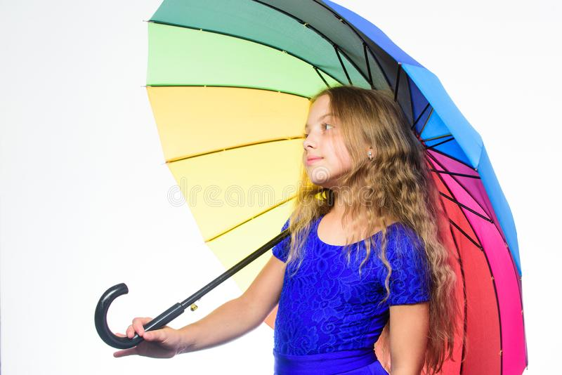 逗留正面秋季 方式改进您的在秋天的心情 方式照亮您的秋天心情 五颜六色的辅助部件为 免版税库存图片