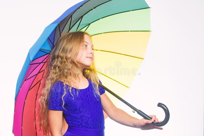 逗留正面秋季 方式改进您的在秋天的心情 方式照亮您的秋天心情 五颜六色的辅助部件为 库存照片